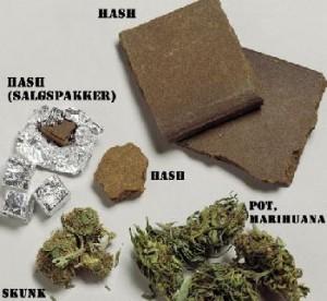 20063282557_hash1-300x276 Musica: Klaus Davi, web pieno di appelli di star a favore della droga